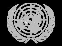 un-logo-vector-pantone